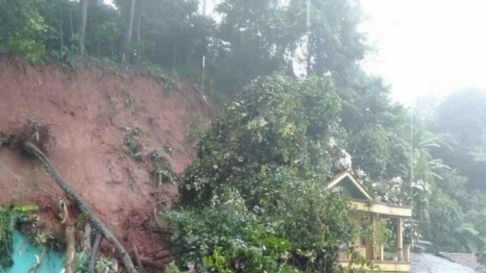 Tiga Rumah Tertimpa Longsor dan Pohon Besar di Jalur Perbatasan Cianjur-Bogor