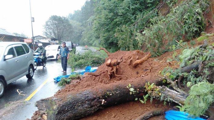 Longsor Terjang Jalur Puncak Cianjur, Pengendara Diimbau Waspada karena Hujan Terus Mengguyur