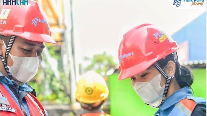 TERBARU, Dibuka 22 Lowongan Kerja BUMN di Anak Perusahaan PT PLN untuk Lulusan D3/S1, Daftar di Sini