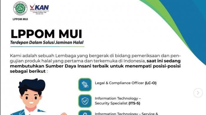 DIBUKA Lowongan Kerja Terbaru untuk Lulusan SMK di Lembaga Pemerintahan LPPOM MUI, Daftar di Sini