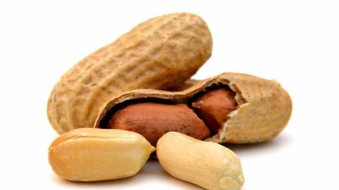 Jarang Diketahui, Ini 10 Manfaat Luar Biasa Kacang Tanah, Cegah