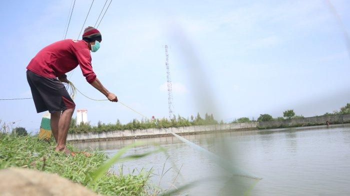 Lahan Persawahan yang Masih Terendam Banjir di Bojongsoang Jadi Tempat Mencari Ikan