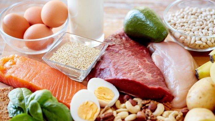 Protein Diperlukan untuk Perbaiki Sel yang Rusak, Ini Makanan-makanan yang Proteinnya Sangat Tinggi
