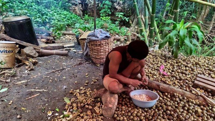 Menjelang Ramadan, Warga Kampung Cibubuay Simpenan Sukabumi Sibuk Bisnis Kolang Kaling