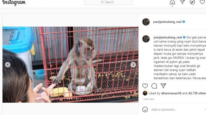 Panji Petualang Murka Lihat Monyet Diseret sampai Menjerit, Akhirnya Beri Rp 1 Juta ke Pengamen