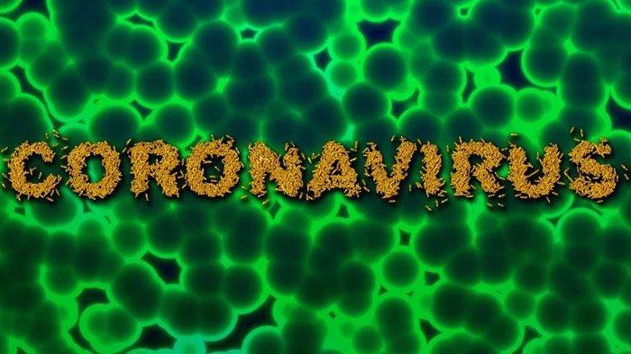 Wabah Virus Corona di Indonesia, 5 Pasien Meninggal, 8 Pasien Sembuh
