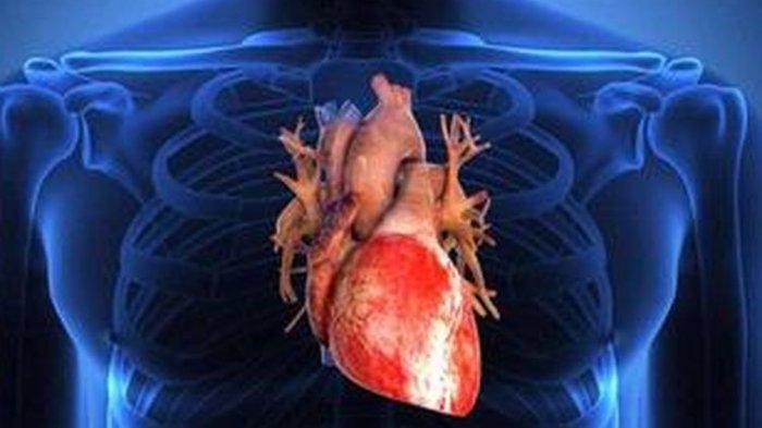 Ingin Bagian Penting dalam Tubuh Ini Tetap Sehat? Minuman Jus Ini Bisa Bantu Bersihkan Organ Hati