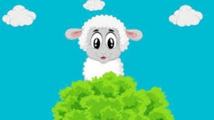 Kumpulan Pantun Ucapan Selamat Hari Raya Idul Adha 2021, Pasang Jadi Status WA atau Caption IG