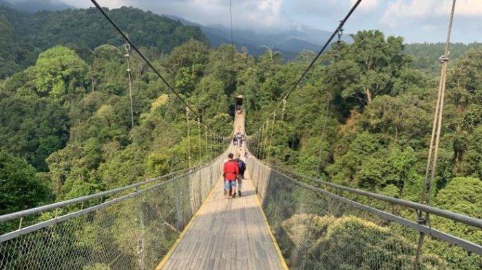 50 Hidden Paradise Pariwisata Ditemukan di Jawa Barat, Segera Dieksplorasi Disparbud Jabar