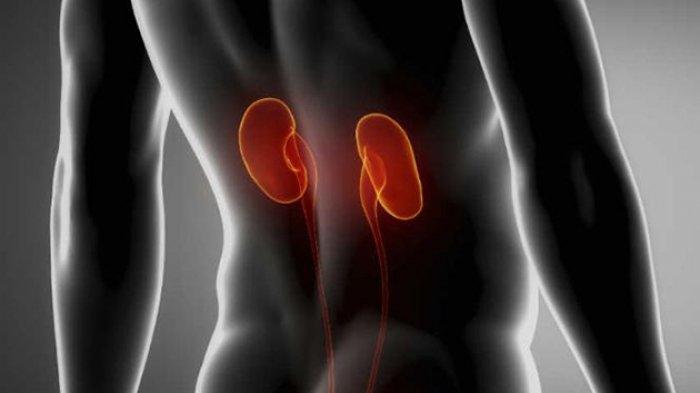5 Penyakit Berbahaya Ini Bisa Dideteksi lewat Bau Mulut, Termasuk Kanker dan Gagal Ginjal