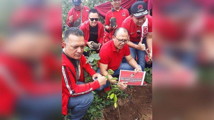 Cegah Banjir dan Lestarikan Lingkungan, Kader PDIP dan Warga Kelurahan Derwati Tanam Seribu Pohon