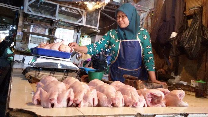 Jelang Ramadan, Harga Ayam Tembus Rp 42 Ribu, Ternyata Ini Penyebabnya