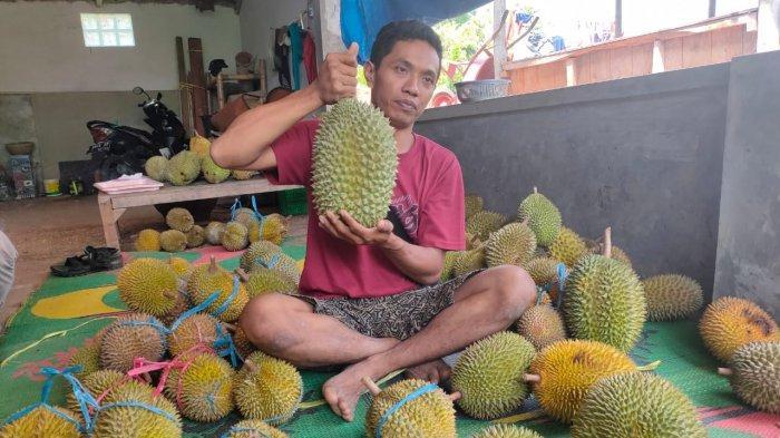Sadi, pedagang durian asal Desa Ujungberung, Kecamatan Sindangwangi, Kabupaten Majalengka.