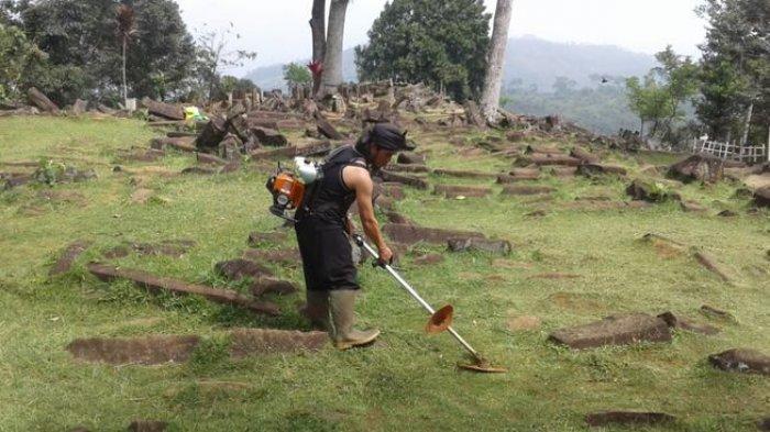 Pembersihan rumput di areal Situs Cagar Budaya Gunung Padang Cianjur