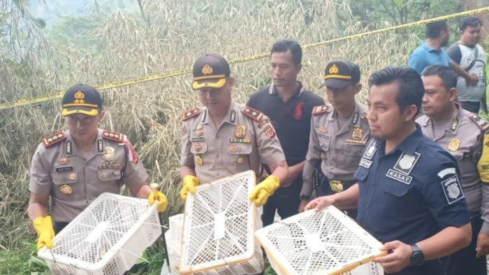 Polres Majalengka Gerebek Penampungan Kukang Jawa, Dua Tersangka pun Diamankan