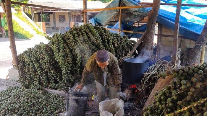 pengrajin kolang kaling sedang mengolah buah aren