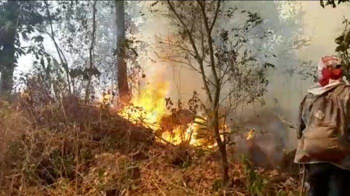 Kisah Relawan Penjinak Api di Gunung Ciremai, Kekurangan Logistik hingga Didatangi Makhluk Halus