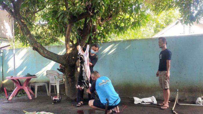 Teladani Nabi Ibrahim AS, PWI Majalengka Berbagi Kebahagiaan Lewat Kurban Dua Kambing