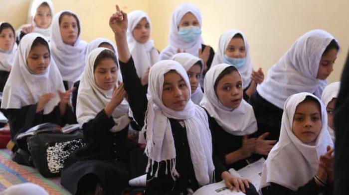 Taliban Memperbolehkan Perempuan Kuliah, Tapi Melarang Menempuh Pendidikan Menengah