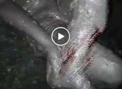 Video Viral, Perempuan 2 Pekan Terkubur Lumpur Petobo Palu Masih Hidup, Menangis Tanyakan Anaknya