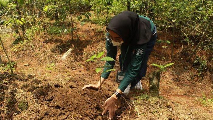 Jelajah Kopi Akan Dilakukan di Semua Sentra Kopi yang Ada di Kabupaten Bandung