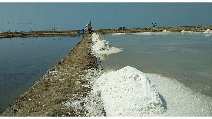 Khawatir Dipermainkan Tenggulak, Petani Minta Pemerintah Ikut Stabilkan Harga Garam