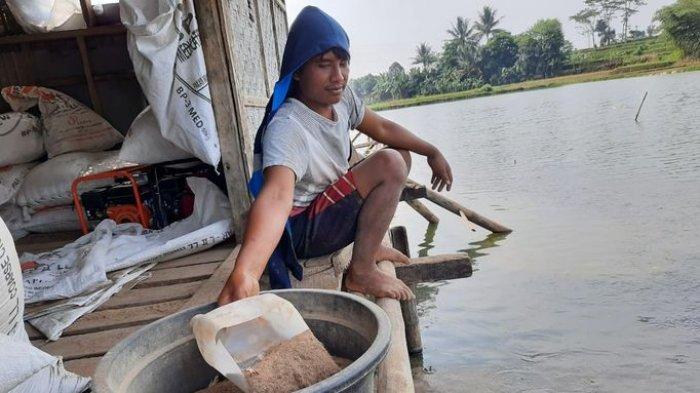 Oksigen Langka, Petani Ikan di Plered Purwakarta Tidak Bisa Kirim Ikan ke KJA Cirata dan Jatiluhur
