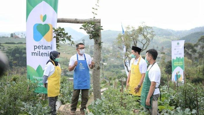 Petani Milenial Juara, Bangkitkan Perekonomian dan Regenerasi Petani di Tengah Pandemi