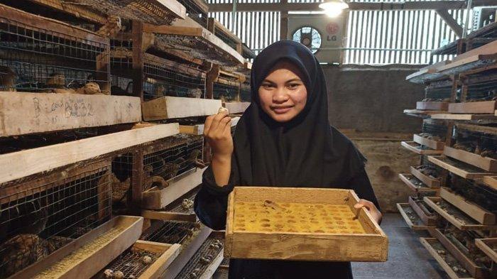 Program Petani Milenial Pemprov Jawa Barat Segera Merambah Sektor Ayam Pedaging