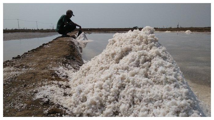 Petani Garam di Desa Rawaurip Cirebon Sebut Harga Dikendalikan Tengkulak