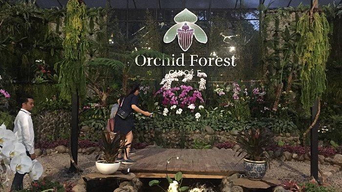 Pintu masuk Orchid Forest Cikole dengan bentuk seperti anggrek jenis papio