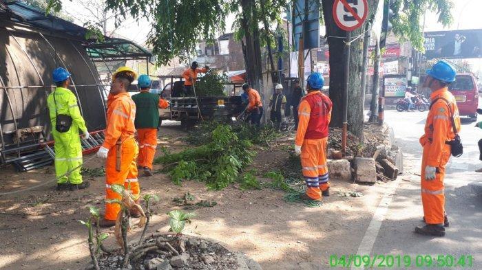 Amankan Jaringan Transmisi, PLN UPT Bandung Lakukan GREBEG ROW
