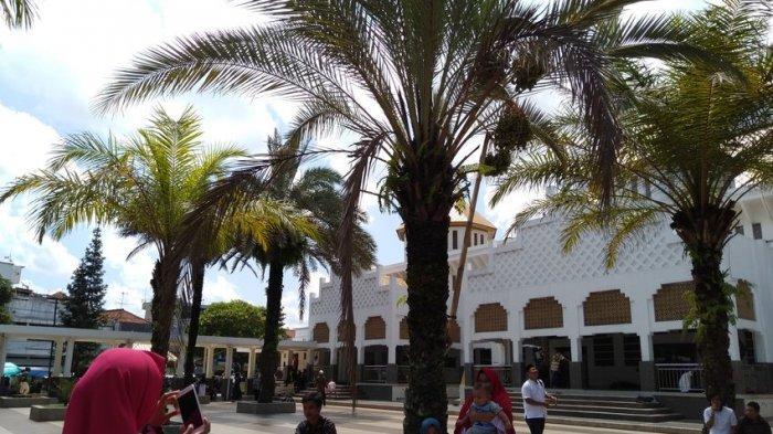 Pohon Kurma di Masjid Agung Kota Tasikmalaya Itu Berbuah, Jadi Ajang Swafoto Warga