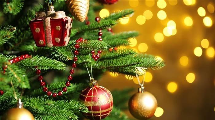 Natal 2020 Ini di Rumah Saja? Biar Seru, Yuk Bikin Pohon ...
