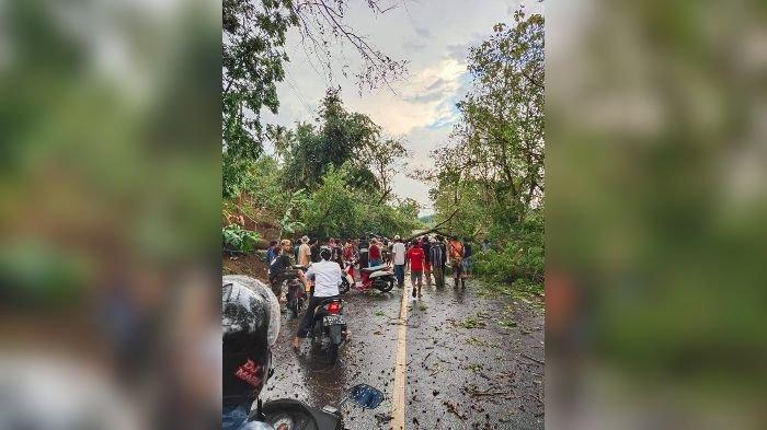 Puting Beliung di Bantargadung Sukabumi, Pohon Tumbang Timpa Rumah dan Tutup Jalan