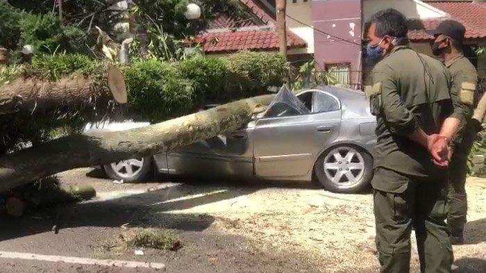 Nasib Pemilik Mobil yang Ringsek Tertimpa Pohon Tumbang di Bandung, Pasrah Lihat Mobil Rusak Parah