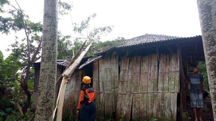 Hujan dan Angin Kencang Landa Jampangtengah Sukabumi Sore Tadi, Rumah Warga Tertimpa Pohon Tumbang