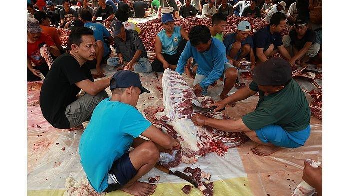 Pelaksanaan Idul Adha di Tengah Pandemi Covid-19, Para Juleha Perlu Pelatihan Penyembelihan Qurban