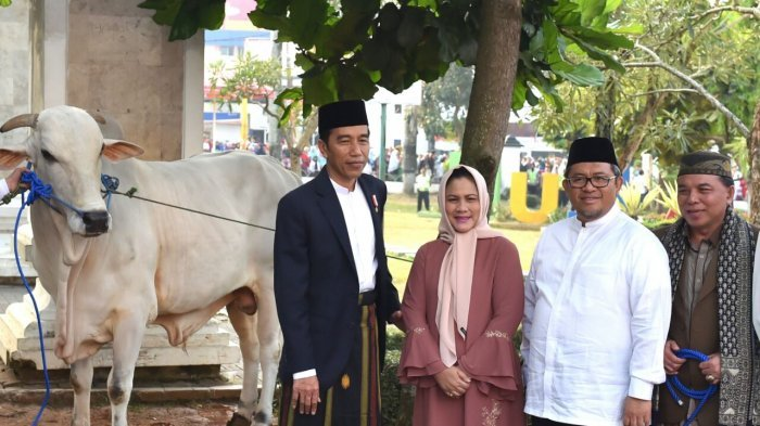 Ternyata Ini Tujuan Presiden Jokowi Rayakan Idul Adha di Sukabumi