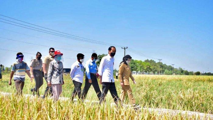 Presiden Jokowi saat menyapa petani di Desa Wanasari, Kecamatan Bangodua, Kabupaten Indramayu, Rabu (21/4/2021).