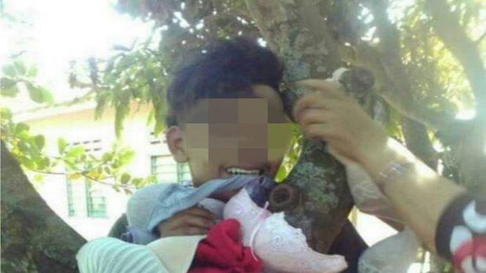 Pria Ini Sial! Tepergok Curi Bra dan Celana Dalam Wanita, Warga Kampung Ikat Dia di Pohon