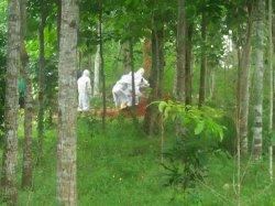 Petugas BPBD Majalengka Hanya Lakukan 3 Pemakaman Covid-19 Selama September, Juni 25 Kali Sehari