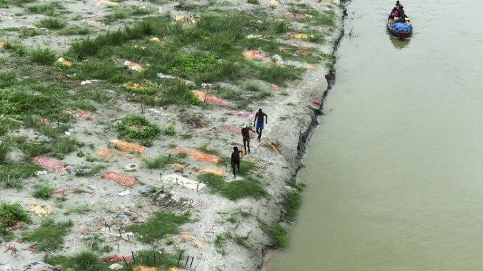 Ratusan Mayat Pasien Covid-19 yang Sudah Dikubur Bermunculan di Dekat Sungai Gangga, Ini Fotonya