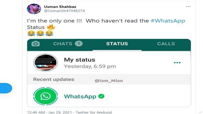 Menghebohkan, WhatsApp Muncul di Status Pengguna, Ada yang Senang dan Ada yang Protes