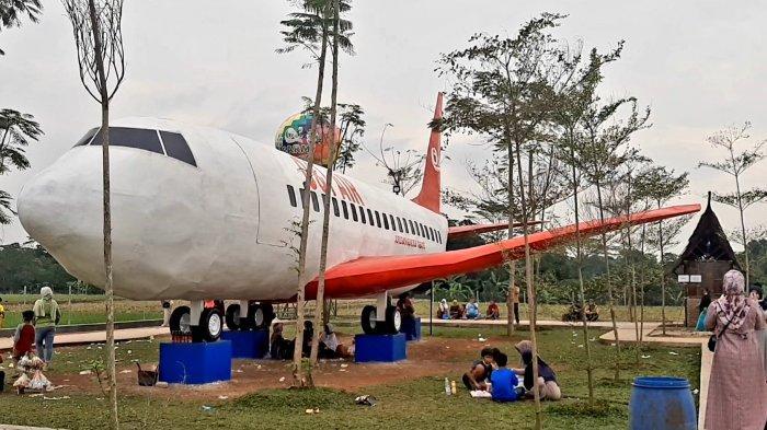 Viral Pesawat di Tengah Sawah di Subang, Ternyata Cuma Replika dan Ini Pemiliknya