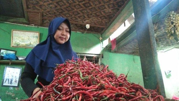 Harga 1 Kg Cabai Merah di Ciamis Kini Setara dengan Harga 10 Kilogram Beras