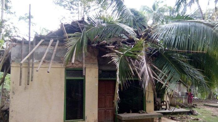 Ditinggal Pergi ke Kebun, Sebuah Rumah Milik Kakek di Pangandaran Rusak Parah Tertimpa Pohon Kelapa