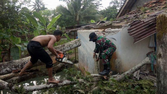 Satu Rumah Warga Rusak Tertimpa Pohon Petai Tumbang di Pamarican Ciamis
