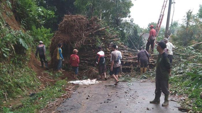 Diguyur Hujan dari Sore Hingga Malam, Rumpun Bambu Runtuh dan Tanah Longsor Tutupi Jalan di Sukabumi