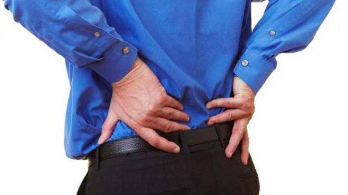 Sakit Pinggang Mendadak? Jangan Panik, Coba 5 Obat Herbal Alami Ini, Mudah Didapat